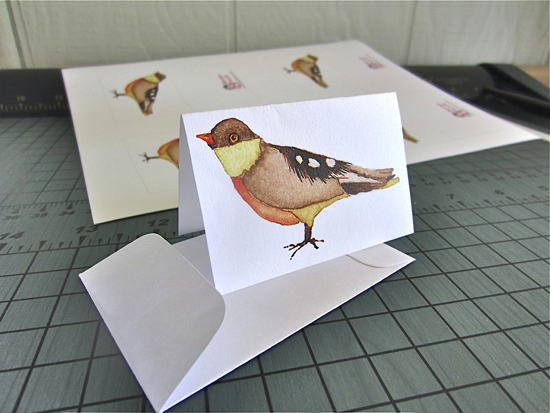 Little Birdie Gift Card Kit
