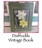 Daffodiles Vintage Book